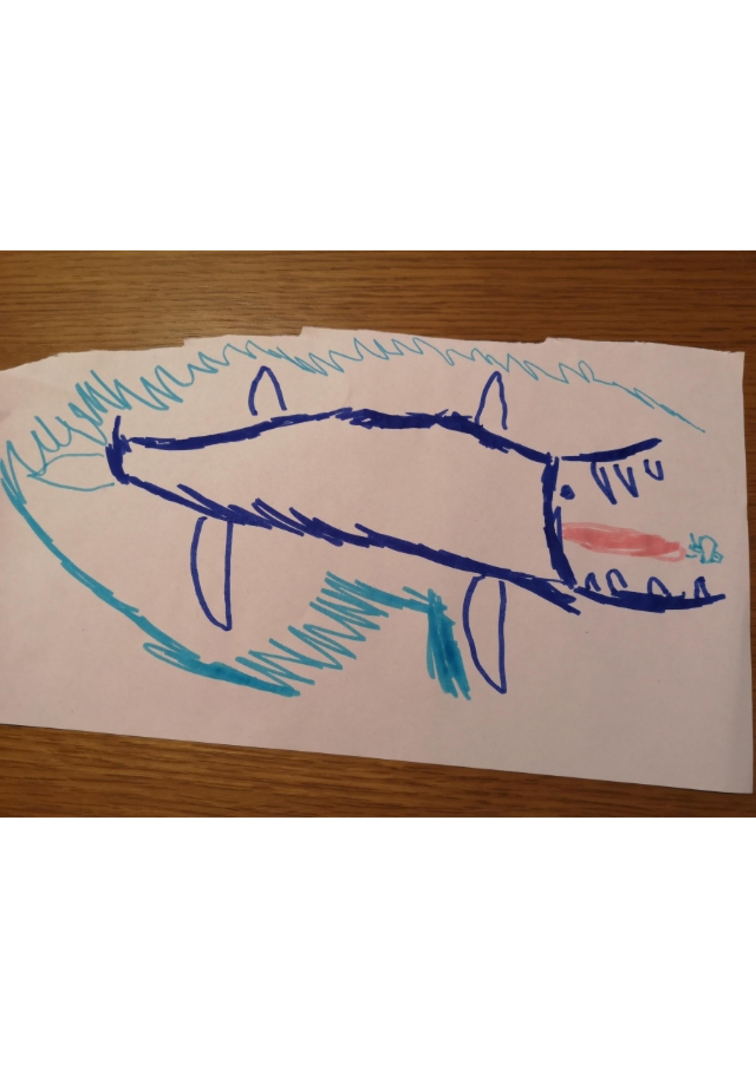 baleine dessin